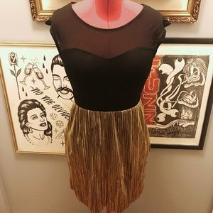 NWT Sheer mesh, metallic pleated  fit and flare